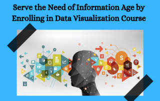 Serve the Need of Information Age by Enrolling in Data Visualization Course