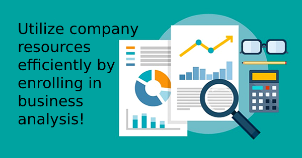Utilize Company Resources Efficiently By Enrolling In Business Analysis!