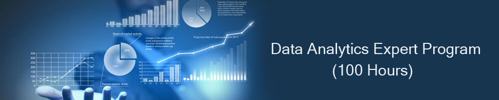 Data Analytics Expert Program